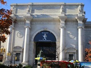アメリカ自然史博物館.jpg