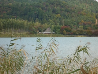 嵯峨野広沢の池.jpg