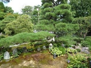東林院の庭.jpg