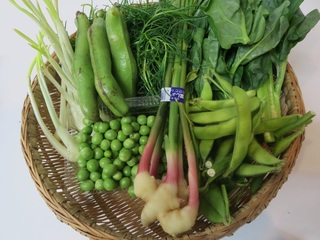 築地野菜1.jpg