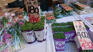 菜の花jpg.jpg