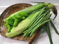 野菜jpg.jpg